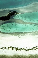 pulo (Farl) Tags: travel blue sea white house reflection beach water colors pool clouds plane boats island coast sand aqua grove coconut muslim tide philippines lagoon aerial huts tango mangrove sulu reef islet stilts tawitawi bluelist firsttheearth
