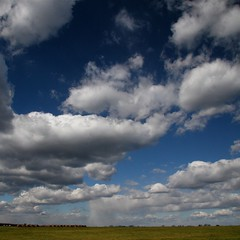 blowin' in the wind (jude) Tags: blue sky white macro nature closeup clouds square wind windy 2006 explore jude judith hay squared  haybales onblue meskill judithmeskill interestingness5  specnature twtme abigfave highestposition5onwednesdaynovember12006 30faves30comments300views musicaltitle supereco imagesonblue judeonflickr