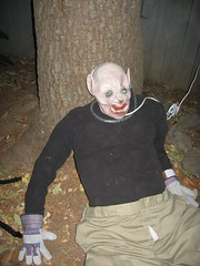 Pig Man 1 (timballas) Tags: man halloween pig headed