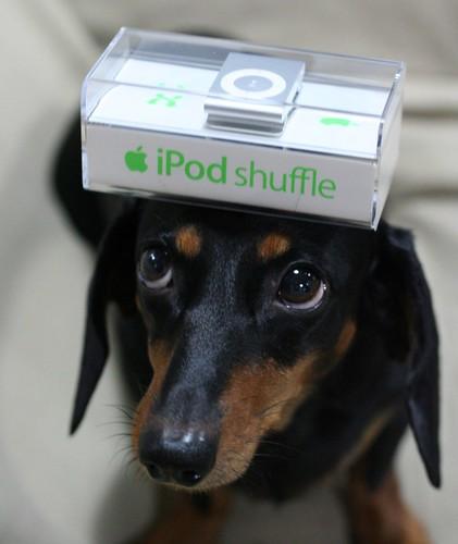 cocoa #35 new iPod shuffle by nao-cha.