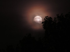 Moon (ronWLS) Tags: moon topf25 topv111 night topv333 cloudy helluva cotcmostfavorited thecontinuum utatafeature p1f1 123f25 superaplus aplusphoto