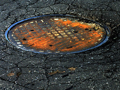 autumnal colours (dedevanderroove) Tags: rusty cracks manholecover underfoot