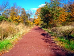 Trail (Manny Pabla) Tags: road park autumn trees sky plants fall nature grass leaves gardens clouds garden landscape us newjersey estate unitedstates path farm nj bluesky trail somerville farms leafs bushes shrubs dukegardens hillsborough hedges bridgewater somersetcounty walkonthewildside wideside dukeestate dukefarms