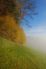Everafter (saturday_flowers) Tags: nature switzerland nikon sigma pilatus lucerne 1735mm d80 nonpostprocess