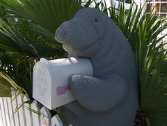 Manatee Mailbox (Joe Shlabotnik) Tags: mailbox florida 2006 manatee keywest faved november2006