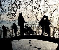 *   kisses falling lightly like shooting stars   *  (Vol-au-Vent) Tags: eye love automne schweiz switzerland blackwhite interestingness lightandshadows bravo suisse kisses happiness lakeshore frontpage thekis