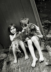 Three mischevious munchkins ({amanda}) Tags: boy dog girl kids outside 50mm kid naturallight 5d bnw cavalierkingcharles 4years 7years amandakeeysphotography