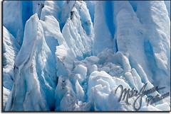 Ice 5955 (MikeJonesPhoto) Tags: blue mountain snow mountains cold ice nature alaska landscape nationalpark photographer scenic glacier professional exit seward professionalphotographer kenaifjords mikejonesphoto