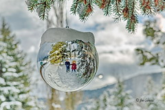 A Christmas Selfie (joeinpenticton Thank you 1.2 Million + views) Tags: bc british columbia selfie picture portrait ok okanagan similkmeen okanogan winter xmas christmas 2016 holiday holidays merry happy lodge ornament ormaments hotel big ball silver reflection snow tree cheers cheerful cheer sunny bright day hanging globe tistheseason wendy