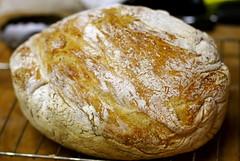La giornata mondiale del pane.. e gli InGASati? 1