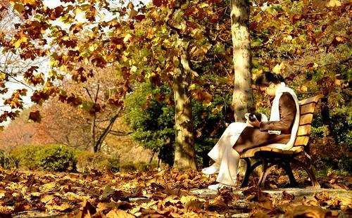 lonely autumn