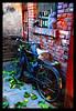 Chegongzhuang Hutongs #7 (NowJustNic) Tags: china door brick window leaves bike catchycolors nikon bottles edited beijing explore 北京 hutong 中国 windowsill 胡同 d80 nikkor18135mm chegongzhuang