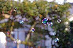 Japanese Bubbles