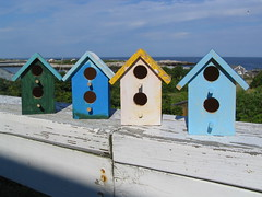 Birdhouses (Lady Strathconn) Tags: summer vacation thing birdhouse 2006 gift conference birdhouses starisland islesofshoals 06aug ucc1