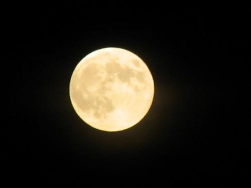 moonlight night sky. into the moonlit night.