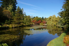 Van Dusen Gardens (rldock) Tags: autumn vancouver vandusengardens flickrsbest favoritegarden