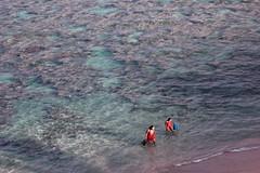 Hanauma bay (Joan Garcia) Tags: beach hawaii scuba hanaumabay