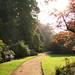The path to Autumn