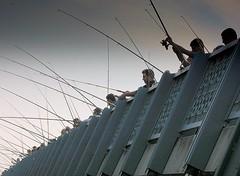 fishermen on Galata bridge (H e r m e s) Tags: bridge blue fish turkey grey fishing istanbul fave galata