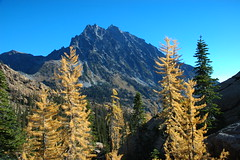 Bound by Larch (Mark Griffith) Tags: washington hiking hike larch teanaway mtstuart mountstuart ingallslake2006