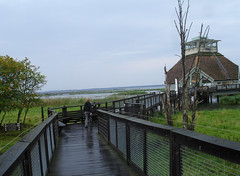 Hornborgasjön Naturum