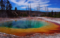 Rasta Springs (Fort Photo) Tags: color nature landscape rainbow nikon bravo d70 nps vibrant vivid 2006 yellowstonenationalpark yellowstone wyoming geology hotspring rasta morningglorypool 50faves outstandingshots specnature nikonstunninggallery abigfave 123f50 bestnaturetnc06