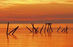 Sticks (hugooz2001) Tags: mississippi fire gold katrina coast nikon gulf peaceful haunting d200 tragic littlestories abigfave colorphotoaward picswithsoul