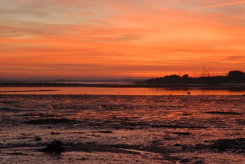 A Langstone dawn