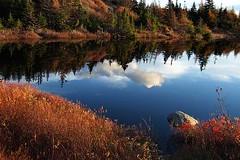Fall Reflection (Clyde Barrett) Tags: autumn reflection fall water newfoundland pond nl nfld clydebarrett