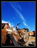 Mechanics (Michel Khoury) Tags: abandoned rust iron bestof bluesky olympus mechanics e500 zd 1454mm