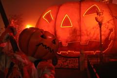 HaloWeeN (@rno) Tags: paris france art pumpkin photo interesting colorful disneyland haloween eurodisney photograpy interessare rno elinteresar interessieren 興味を起こさせること interessar
