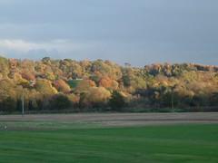 Autumn colours Clyde Valley (Elizmar) Tags: autumn scotland lanarkshire carluke clydevalley