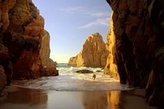 Fetch! (antonioVi (Antonio Vidigal)) Tags: dog portugal sintra weimaraner fetch cascais roca ursa cabodaroca praiadaursa exploretop20 abigfave