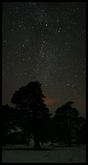 Scots Pines at night (rg250871) Tags: longexposure night stars cairngorms cairngormnationalpark glenfeshie feshie robbiegraham