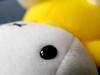 guess who 2 / rara 2 (wester) Tags: white black macro yellow toy dof bokeh miffy nijntje byw top20bokeh