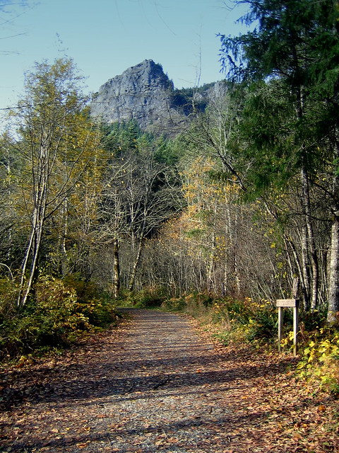 Path to the trail at Rattlesnake