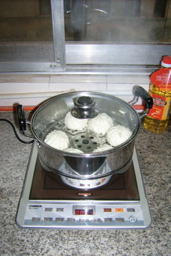 our first electric cooker
