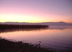 new day (kosova cajun) Tags: pink dawn macedonia balkans makedonija agrim struga lakeohrid peisazh southeasterneurope maqedoni strug liqeniiohrit ysplix