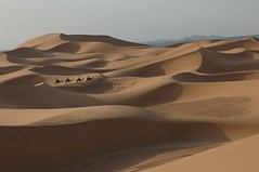 Desert Journey - The Erg Chebbi Dunes, Morocco - by Robbie