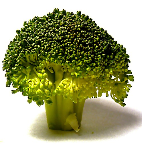 Broccolli doesn't grow on trees, you kno by Darwin Bell, on Flickr