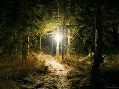 lokakuu2-2006 238b (Fantasyfan.) Tags: light nature lamp topv111 tag3 taggedout night rural forest finland dark landscape topv555 topv333 tag2 tag1 darkness path topv999 romantic topv777 pudasjrvi romanticism fantasyfanin prj missedthetag pathtospring siirretty