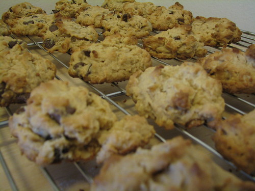 peanut butter oatmeal choc. chip cookies