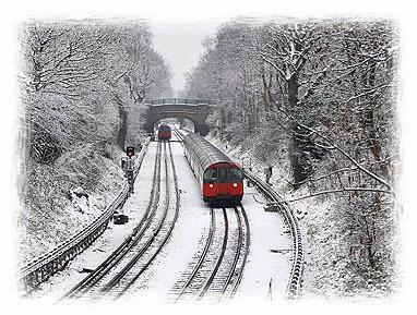snowtube.jpg