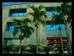 Luxury Mall / Ocean Park, Hanoi (Vietnam)