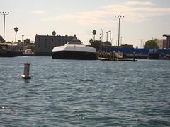 IMG_3667 (robwarne) Tags: friends sailing coronado sandiegobay