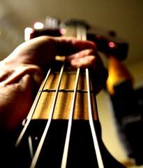 Bass how low can you go? (i am brad) Tags: dof bass guitar grain vein vain publicenemy stringsattached utatainhalf basshowlowcanyougo eadg