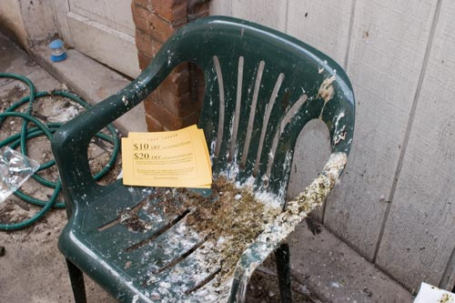 Plastic Chair with pigeon shit