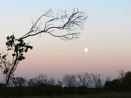 October Full Moon Rising