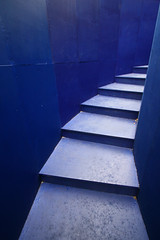 Blue Steps (Davoud D.) Tags: blue up stairs liverpool steps down descend biennial ascend merseyside thepool scouse scouseland candaianthanksgiving lpstairs