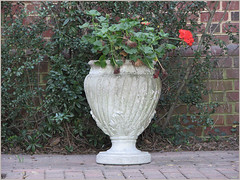Courthouse Urn (Bravo213) Tags: flowers red brick leaves urn leaf vines courthouse bravo213
